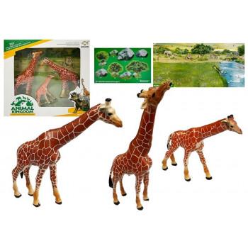 Żyrafy Figurki Edukacyjne 3 sztuki + Tło