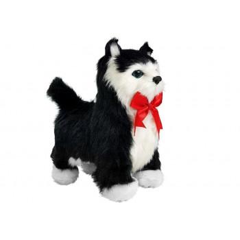 Interaktywny Kot  Czarno- Biały Porusza się, Miauczy